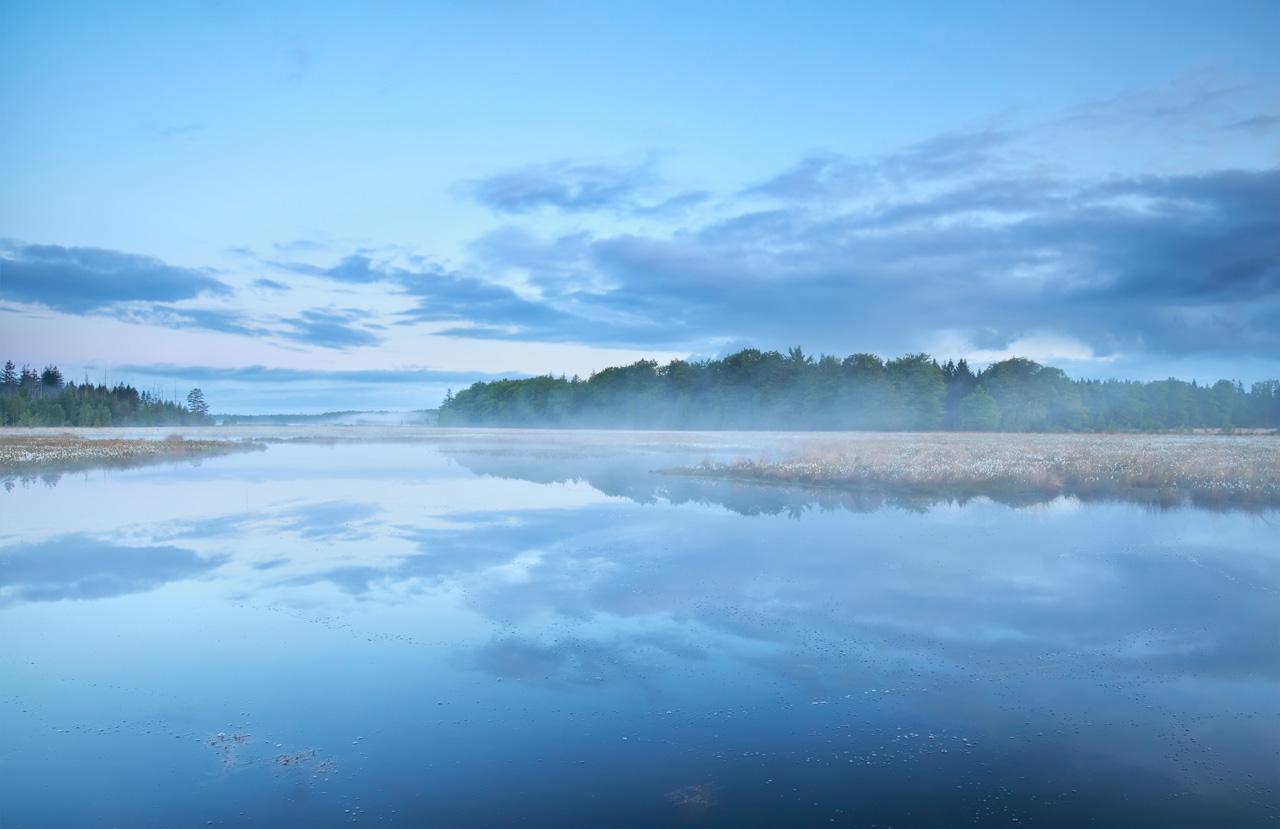 Misty Lake Printed Splashback Genie Splashbacks